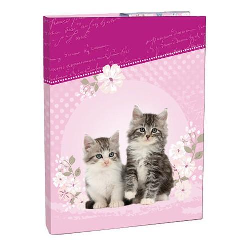 Box na zošity A4 Kitten STIL