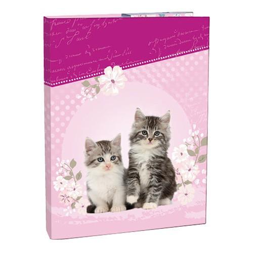 Box na zošity A5 Kitten STIL