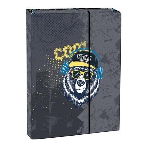 Box na zošity s chlopňou A5 Cool bear STIL
